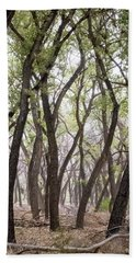 Dance Of The Trees Beach Sheet by Mary Lee Dereske