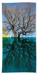 Dancers Tree Reflection  Beach Sheet