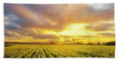 Dances With The Daffodils Beach Towel by Ryan Manuel
