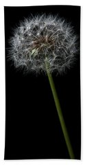 Dandelion 1 Beach Towel
