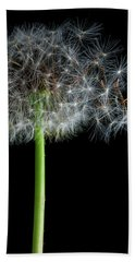 Dandelion 3 Beach Towel