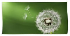 Beach Towel featuring the photograph Dandelion by Bess Hamiti