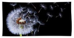 Dandelion Blowing On Black Background Beach Sheet by Bess Hamiti
