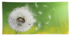 Beach Towel featuring the photograph Dandelion Clock In Morning by Bess Hamiti
