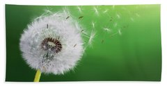 Beach Towel featuring the photograph Dandelion Seed by Bess Hamiti