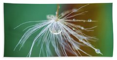 Dandelion Water Drop Macro 2 Beach Sheet