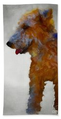 Darby Dog Beach Towel