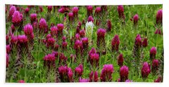 Beach Towel featuring the photograph Dare To Be Different by Barbara Bowen