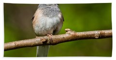 Dark Eyed Junco Perched On A Branch Beach Sheet