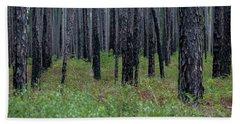Dark Forest Beach Sheet