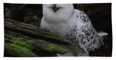 Dark Forest Snowy Owl Beach Sheet
