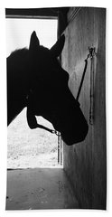 Dark Horse Beach Sheet