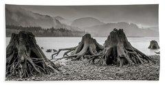 Dark Lake Beach Towel