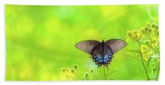 Beach Towel featuring the photograph Dark Morph Female Tiger Swallowtail Butterfly by Lori Coleman