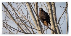 Beach Towel featuring the photograph Dark-morph Western Red-tailed Hawks by Ricky L Jones