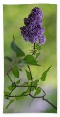 Dark Violet Lilac Beach Sheet