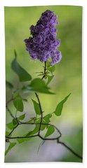 Dark Violet Lilac Beach Towel