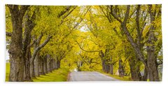 Darling Hill Autumn Beach Sheet by Tim Kirchoff