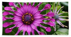 Daisy Of A Different Kind Beach Towel