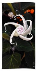 Datura Bud  Beach Towel