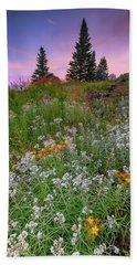 Beach Towel featuring the photograph Dawn At Height Of Land by Rick Berk