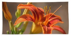 Day Lilies In The Wild 3 Beach Towel