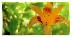 Daylily Beach Towel by Charles Ables