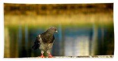Daytona Beach Pigeon Beach Sheet by Chris Mercer