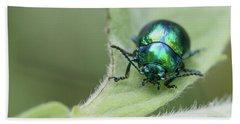 Dead-nettle Leaf Beetle - Chrysolina Fastuosa Beach Towel