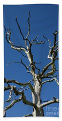 Dead Oak Tree Beach Towel
