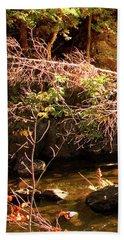 1 Of 6 Dead River Falls  Marquette Michigan Section Beach Sheet