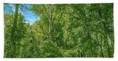 Beach Towel featuring the photograph Dead Tree Gaeddeholm by Leif Sohlman