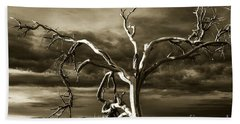 Beach Towel featuring the photograph Dead Tree In Death Valley 10 by Micah May
