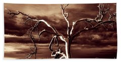 Beach Towel featuring the photograph Dead Tree In Death Valley 11 by Micah May