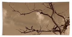 Beach Towel featuring the photograph Dead Wood by Rob Hans