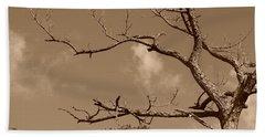 Beach Sheet featuring the photograph Dead Wood by Rob Hans