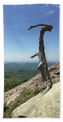 Decaying Tree At The Top Of Table Rock Trail South Carolina Beach Sheet by Kelly Hazel