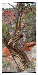 Decorative Dead Tree Beach Towel