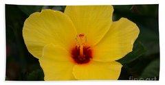 Decorative Floral Photo A9416 Beach Sheet