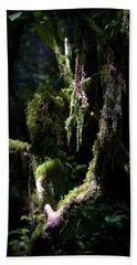 Beach Towel featuring the photograph Deep In The Forest by Lori Seaman