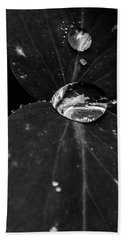 Beach Sheet featuring the photograph Deep Refraction Between Leaves by Darcy Michaelchuk