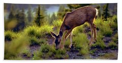 Deer At Crater Lake, Oregon Beach Towel