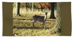 Deer At Valley Forge Beach Towel