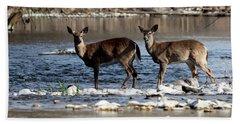 Deer Crossing 1 Beach Towel