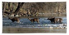 Deer Crossing 4 Beach Towel