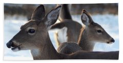 Deer Family Beach Sheet