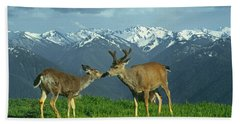 Ma-181-deer In Love  Beach Sheet