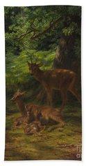 Deer In Repose Beach Towel
