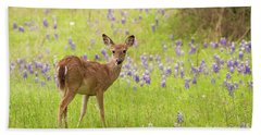 Deer In The Bluebonnets Beach Towel