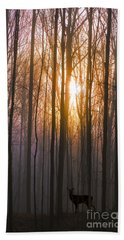 Deer In The Forest At Sunrise Beach Towel